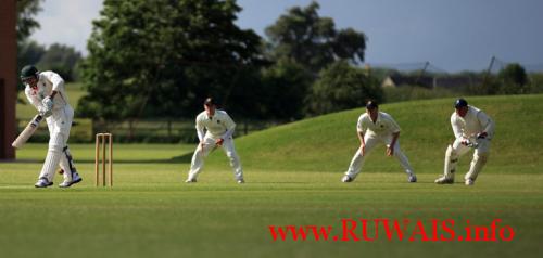 ruwais-cricket-field